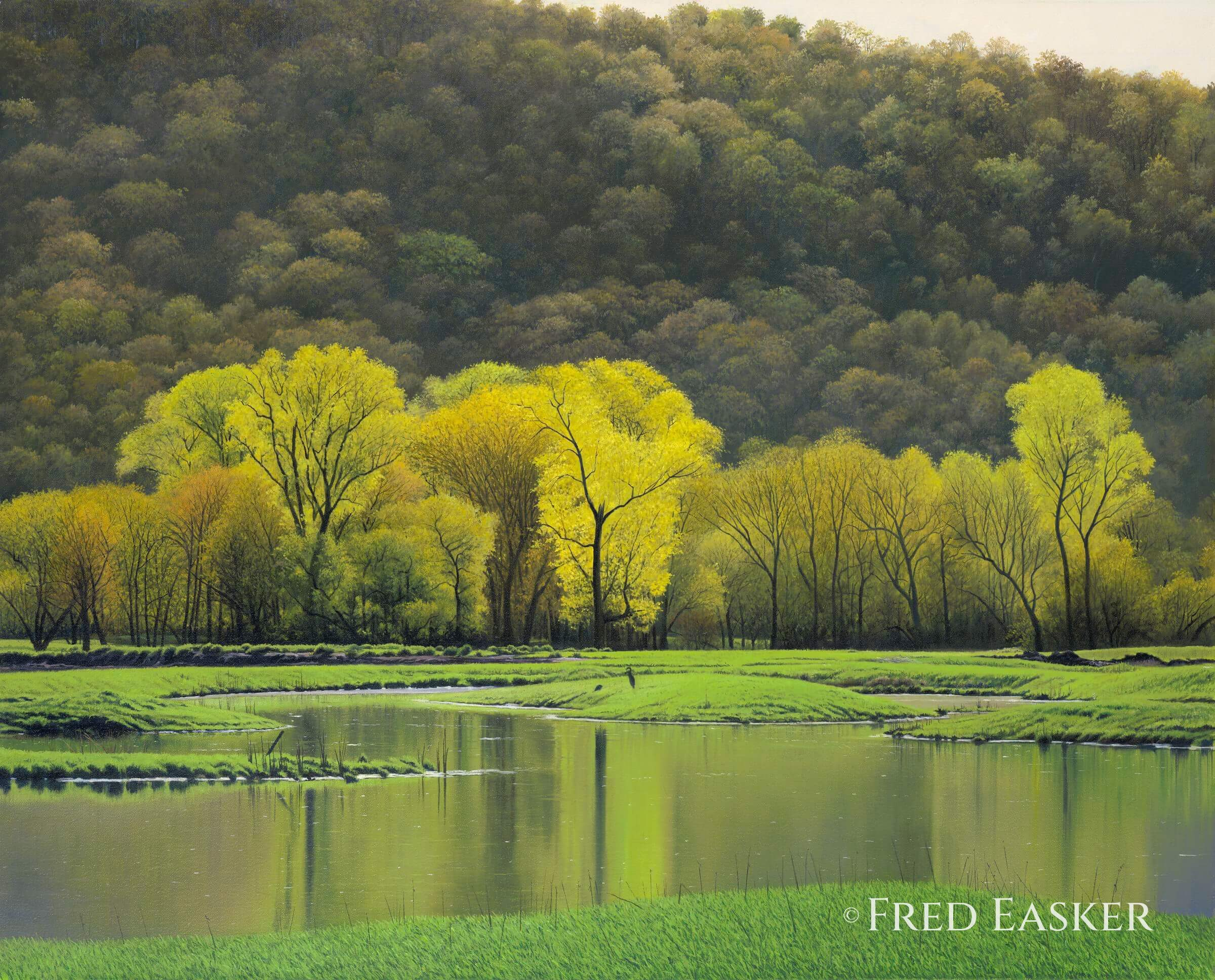 Spring Wetland by Fred Easker